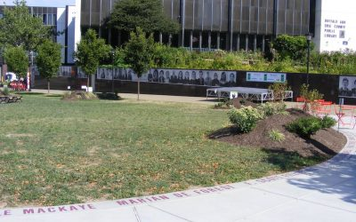 """The Buffalo and Erie County Library has opened an """"outdoor reading room."""""""